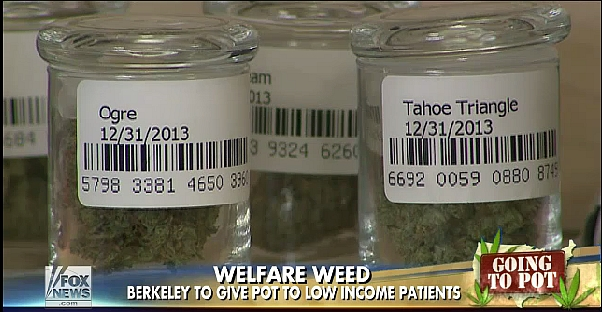 EBT weed