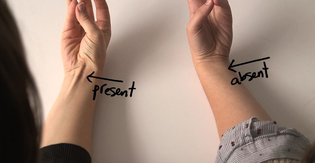 [VIDEO] Anatomical Signs Show Whether, OR NOT, You Have EVOLVED