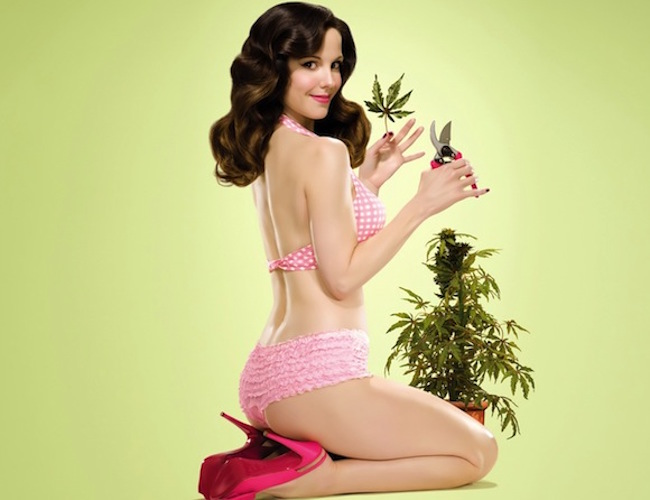 A New Study: Marijuana And Your SEX LIFE- You're Not Gonna Believe What It Says