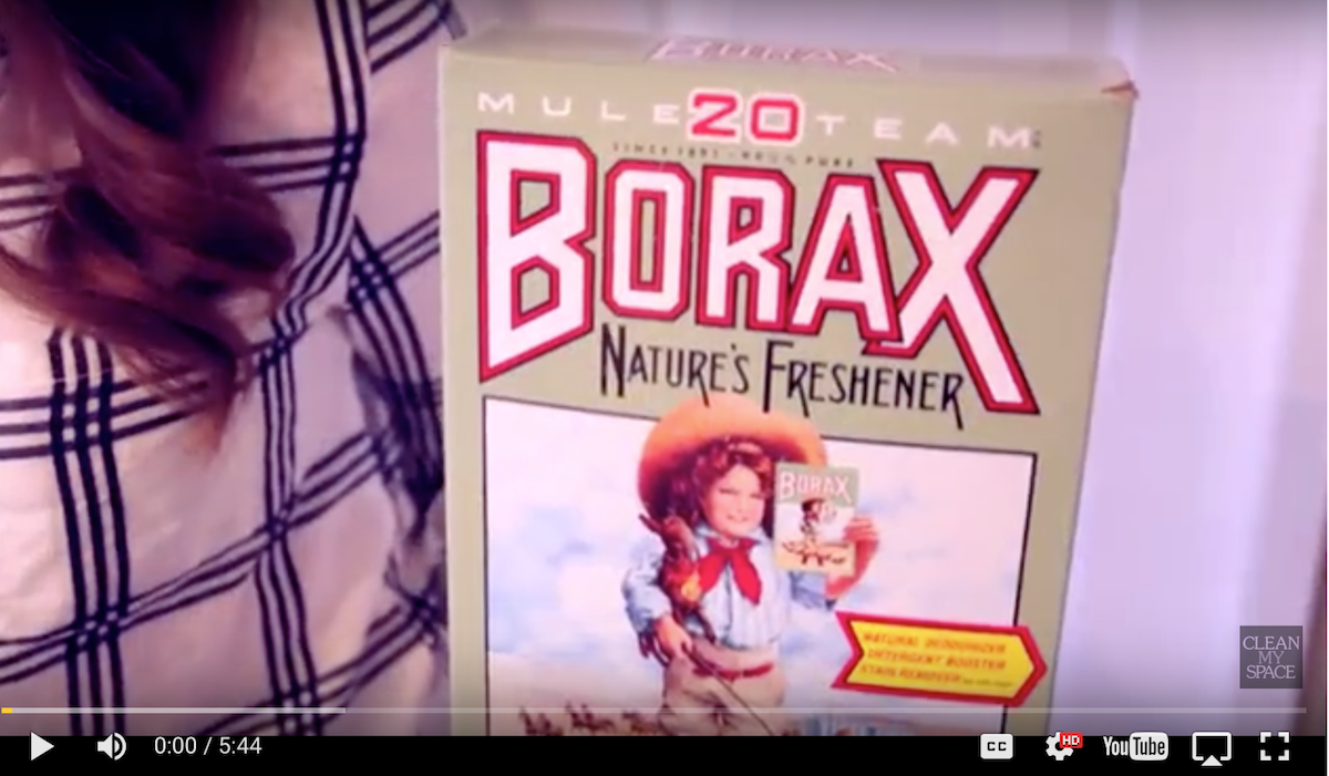 [VIDEO] This Is Why You Need BORAX In Your Life! YES! BORAX!