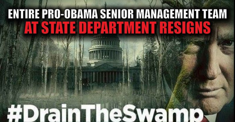 drain-the-swamp-trump-009-01-800x416