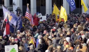 """Video Shows Massive Pro-2nd Amendment Crowd Reciting """"Pledge Of Allegiance""""…Followed By """"We Will Not Comply!"""""""
