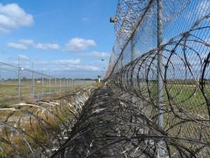 Prison-Fence-Public-Domain-300x225