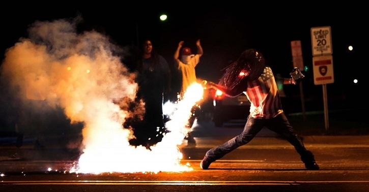 Animals rioting in Ferguson