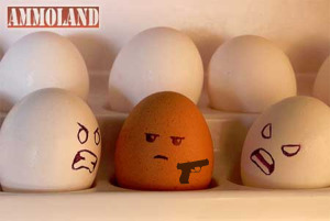 Gun-Owner-Discrimination