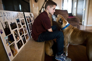 David Heath, 15, of Gilbert, Ariz., with the Heath's new dog, Bo, a boxer, at his home. Behind him are tributes to the family's three dogs that died at Green Acre Dog Boarding in June.