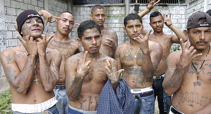 124 Illegals Obama Freed Commit 138 Murders