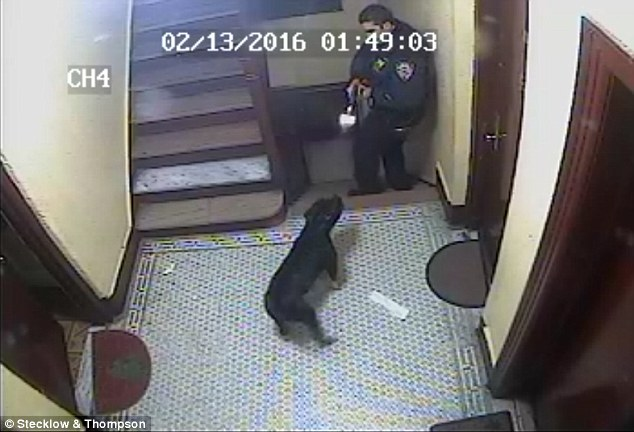 [DISGRACEFUL VIDEO] NYC Cop Shoots NON AGGRESSIVE Dog DEAD At Point Blank Range
