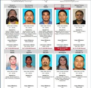 illegal alien killers