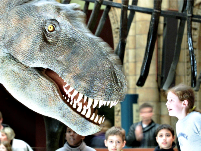 Police Identify Woman Who Had Sex With Dinosaur in Exhibit
