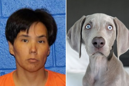 Police Make Disturbing Find After Arresting Woman For Having Sex With A Dog